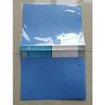 得培力(depli)D-8802 强力文件夹 双扣 25/箱 蓝色 单个价