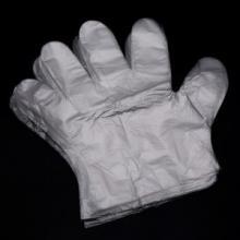 桂凤 一次性PE卫生手套 美容/医用/化工/实验手套 1000只/打 一箱10打