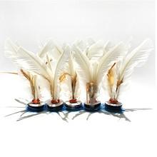 杜威克 大号毽子 比赛专用儿童成人毽球 鹅毛羽毛健身器材牛筋底花键 5个装 白色