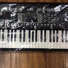 爱尔科(ECHO)K180 61键带力度钢琴键电子琴