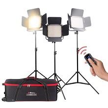锐玛(EIRMAI)YB901S 摄像机LED摄影摄像灯 外拍补光灯 三灯套装
