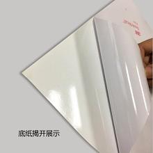 安赛瑞 25310 垃圾分类标志标识(干垃圾)生活垃圾标示 上海国家标准细化分类垃圾标语标识3M不干胶 180×270mm 一张 黑色