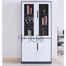 中美隆 GL-01923窄边文件柜 柜类
