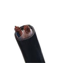 泰锐-1KV低压动力铜芯电力电缆-ZR-YJV-0.6/1KV-2*6