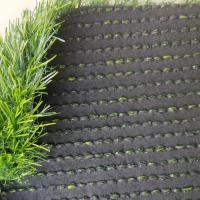 佳典草坪 人造草坪毯 加密春草 3厘米 按平方售
