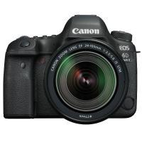 佳能(Canon)EOS 6D Mark II 单反相机 全画幅传感器 2620万像素 3英寸显示屏 45点全十字自动对焦 无机身存储 配EF 24-105mm f/3.5-5.6 IS STM镜头+...
