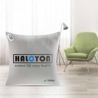 和正(Hezheng)HZ-BZ-2 多功能抱枕被 单个 LOGO定制500个起(3D打印单色 工期20天)