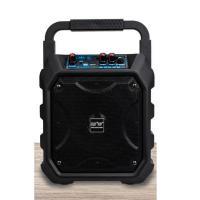 先科(SAST)A36 无线蓝牙音箱 含无线话筒