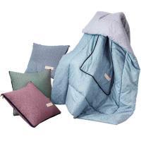 天琴(TISEN)TQ-J51 被子 生态羊绒抱枕被 单套