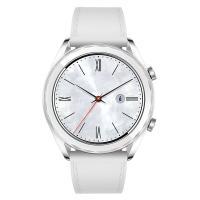 華為(HUAWEI)WATCH GT 雅致款 鋼色 華為手表 單個 白色