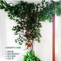 青禾 植物装饰 过胶榕树叶小套餐 含3捆树藤等
